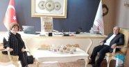 Cumhurbaşkanı Başdanışmanı Prof. Dr. Bayram Altan'ı Ziyaret Etti