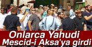Onlarca Yahudi yerleşimci Mescid-i Aksa'ya girdi