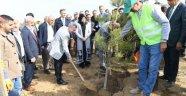 Yeşilyurt Belediyesinden  Bin 111 Adet Fidan Dikildi